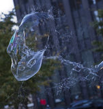 Iridescent Bubbles Bursting in Montreal Stock Image