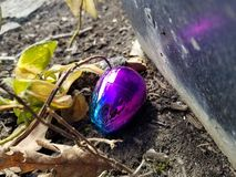 Iridescent hiding egg royalty free stock photos