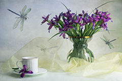 Iris. Still life with iris and dragonfly Royalty Free Stock Images
