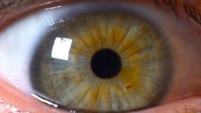 Iris ascendente cercano del ojo humano del extremo almacen de metraje de vídeo