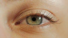 Iris ascendente cercano del ojo humano del extremo en vídeo de 4K UHD Contratación del iris del ojo humano Ascendente cercano del metrajes