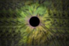 Iris Background - de Stijl van de Melkwegkosmos, Heelal Astronomisch Behang met geelgroene stardust vector illustratie