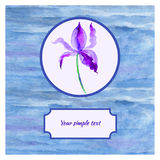 Iris blue flower watercolor illustration  on white background, decorative paining texture, Hand drawn vector Stock Photo