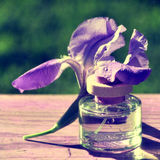 Iris and bottle of parfum stock photography