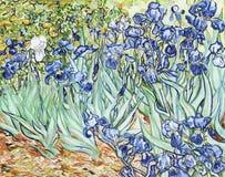 Iris 1889 de Vincent van Gogh stock de ilustración