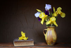 Iris in einem keramischen Vase und in einem Buch Stockfotografie