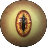 Iris eye Stock Photos