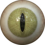 Iris eye Royalty Free Stock Photography