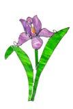Iris fabriqué à la main en verre souillé d'isolement sur le blanc Images stock