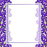 Iris Flower Banner Card Border on White Background. Vector Illustration.  royalty free illustration