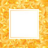 Iris Flower Banner Card orange Illustration de vecteur Illustration Stock