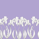 Iris flower graphic violet color seamless background sketch illustration. Vector Royalty Free Stock Photography