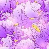Iris flower pattern Royalty Free Stock Image