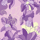 Iris flower seamless pattern Royalty Free Stock Photos