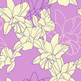 Iris flower seamless pattern Stock Image