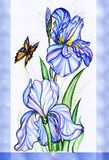 Iris flowers and butterfly Stock Image