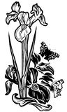 Iris flowers. Iris flower bouquet vector design - black and white floral composition with butterflies Stock Photo
