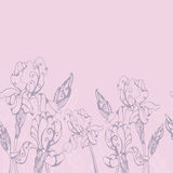 Iris flowers horizontal seamless border Royalty Free Stock Photo