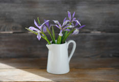 Iris flowers in white jug Stock Images
