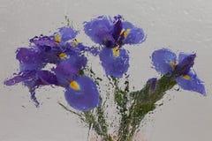 Iris impressionistic Stock Image