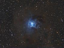 The Iris Nebula royalty free stock image