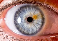 Close up eye. close up Iris. very Close macro shot of an eyeball. Blue with fibres and orange streak. Blue with fibres and orange streak. eyeball, eyelashes stock photo