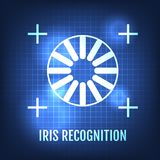 Iris Recognition Concept Icon. Eye Identification. Vector Illustration royalty free illustration