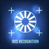 Iris Recognition Concept Icon Identificação do olho ilustração royalty free