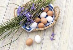 Iris salvajes, púrpuras y una cesta con los huevos de Pascua en la tabla de madera Imágenes de archivo libres de regalías