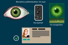 Iris scan - biometric authentication method diagram, vector infographics. Abstract vector infographics: Iris scan - biometric authentication method diagram stock illustration