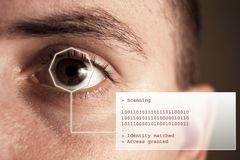Iris scan and text. Iris scan - security system. Additional text Royalty Free Stock Photography