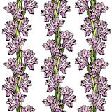 Iris seamless ornament. Stylish seamless background wit iris flowers vector illustration