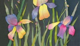 Iris sur le fond noir Photographie stock libre de droits