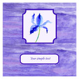 Iris violet flower watercolor illustration  on white background, decorative paining texture, Hand drawn vector Stock Photography