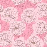 Irisblomma Arkivbild
