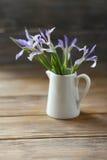 Irisblumen in einem Krug Lizenzfreie Stockfotografie