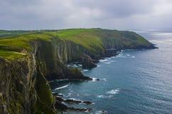 Irische Klippen auf altem Kopf Stockbilder