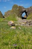 Irische Landschaft, grünes Gras bedeckte Seeküste, mit Steinhügel und Höhle, nahe bei Ballintoy Stockfoto