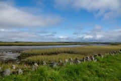 Irische Landschaft nahe von Carrigafoyle-Schloss Lizenzfreies Stockfoto