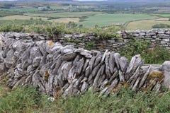 Irische Steinwandgrafschaft Clare Ireland 2 Stockbilder