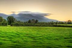 Irische Wiese am Sonnenuntergang Stockfoto