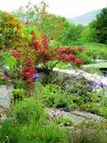 Irischer Garten Stockbilder