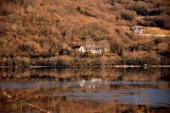 Irisches Land-Haus auf der Ufergegend Lizenzfreie Stockfotos