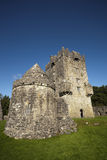 Irisches Schloss Lizenzfreie Stockfotos