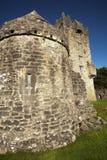 Irisches Schloss Stockfoto