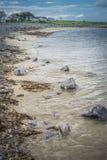 Irisches Seeleben stockfotografie