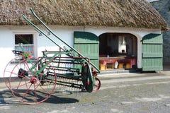 Irisches traditionelles Häuschen Stockbild