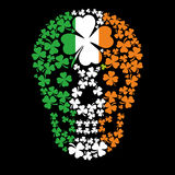 Irisches Wappen mit dem Schädel Lizenzfreie Stockfotografie