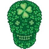 Irisches Wappen mit dem Schädel Stockfotos
