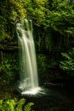 Irisches Wasserfall-Porträt stockfoto